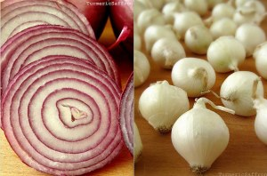 Red _White _Onions