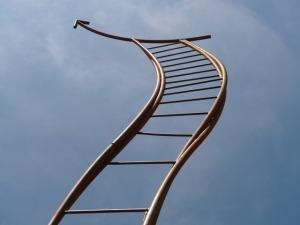 ladder curvy